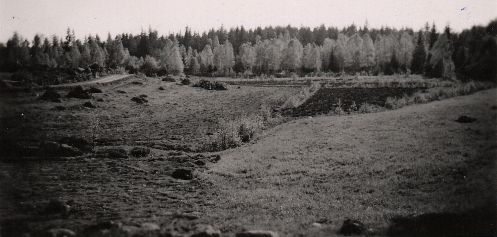 barndomens utsikt mot söder, år 1949